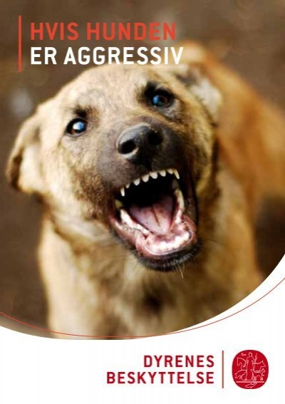 dyrenes beskyttelse hunde til salg