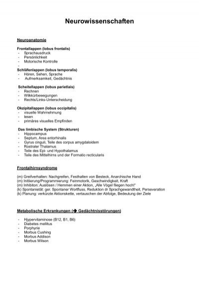 Neurowissenschaften - Waldpark OpenAir
