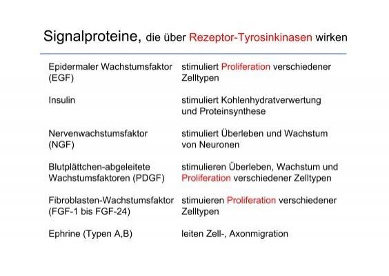 Enzymgekoppelte Rezeptore