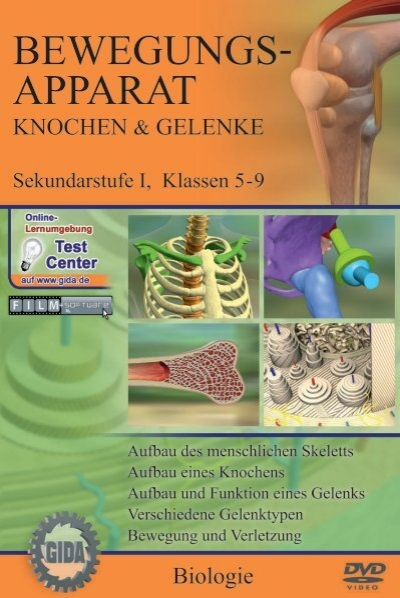 Testatfragen Anatomie Bewegungsapparat - Fsrmed