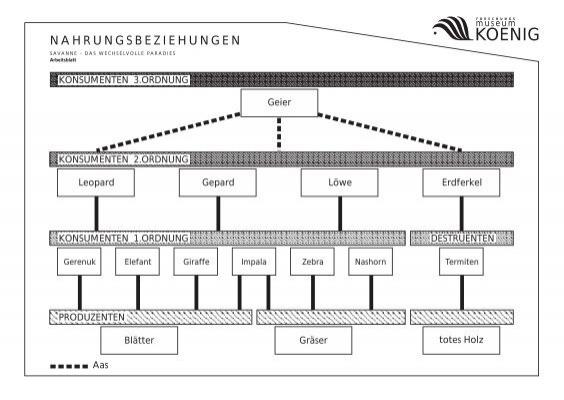 Großartig Produzenten Verbraucher Und Zersetzer Arbeitsblatt Galerie ...