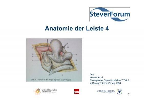 Anatomie der Leiste 3 Aus