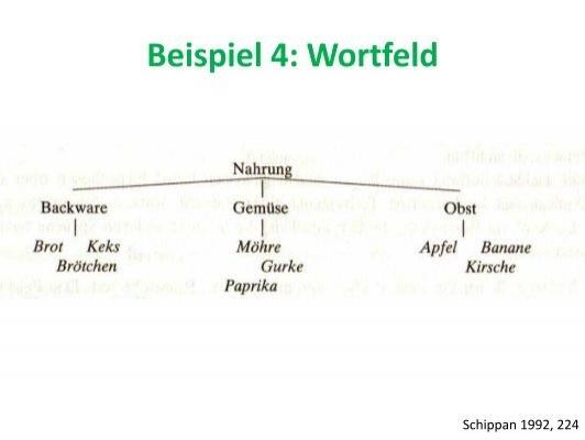beispiel 3 wortfeld schi - Wortfelder Beispiele