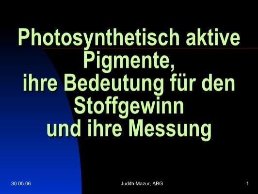 Lichtreaktion Magazine