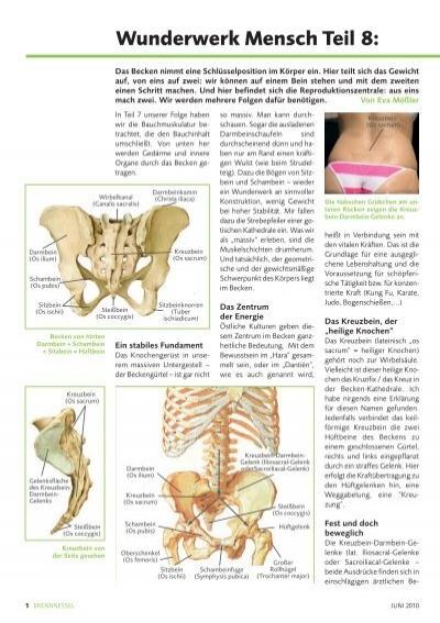 """Teil 8: Das Becken und """"der heilige Knochen"""" - gesundheitsgymnastik"""