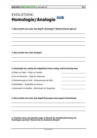Homologie/Analogie - Learnable