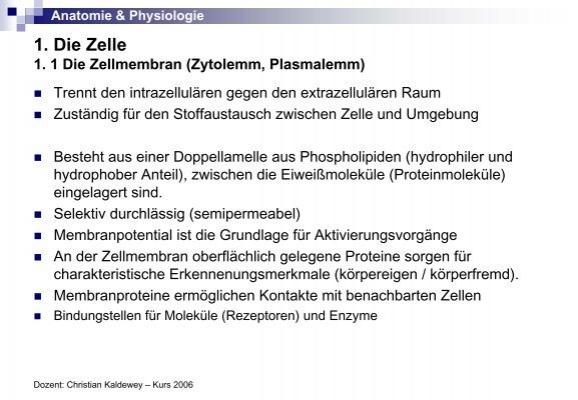 Ungewöhnlich Erklärt Die Beziehung Zwischen Anatomie Und Physiologie ...