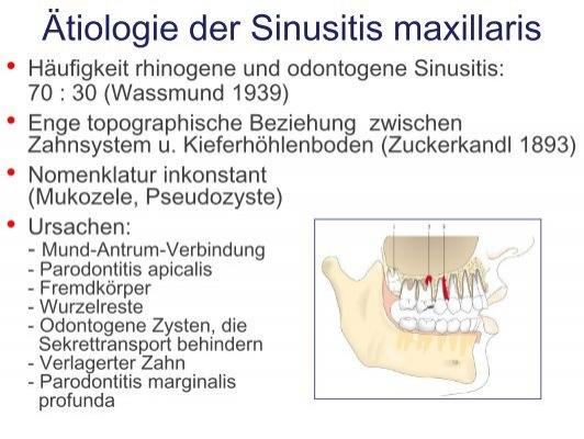 Atemberaubend Anatomie Und Physiologie Beziehung Fotos - Anatomie ...