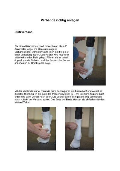PDF: Verbände richtig anlegen - Mein Pferd