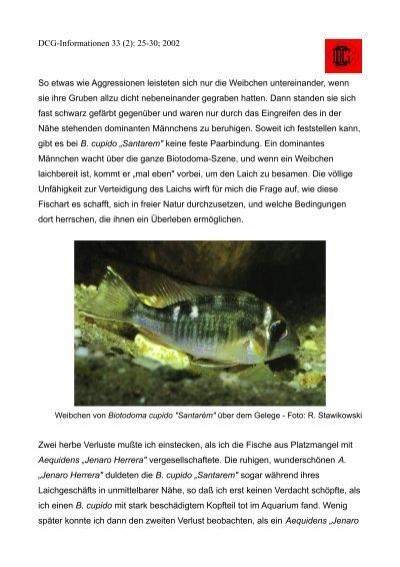 DCG Informationen 33 (2):