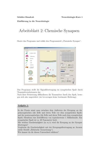 Arbeitsblatt 2: Chemische Synapsen