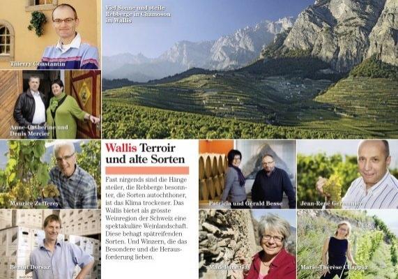 Zum Text Der Schweizer Illustrierten Chanton Weine