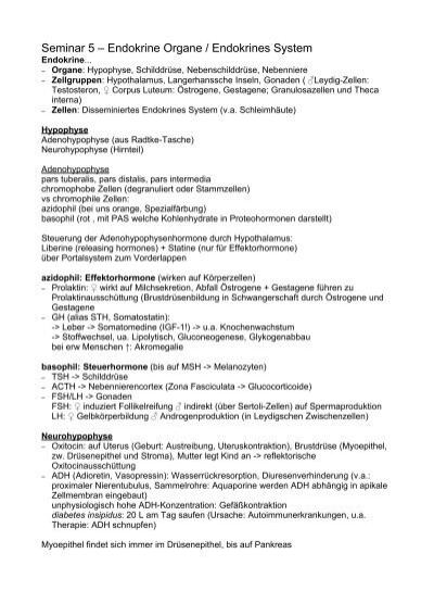 Seminar 5 – Endokrine Organe / Endokrines System