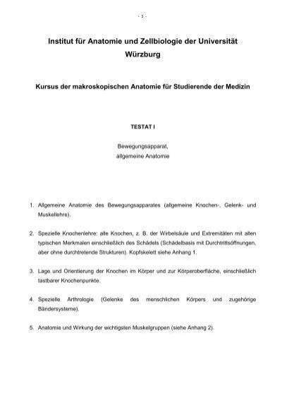 d) Sinus paranasales (mit Verbindungen) - Institut für Anatomie und ...