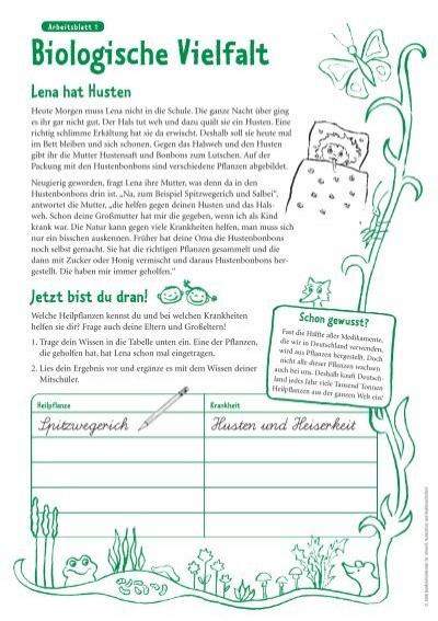 Arbeitsblatt 1 Biologisch