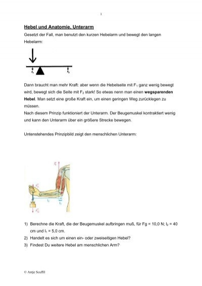 Hebel und Anatomie, Unterarm - Scuffil.de