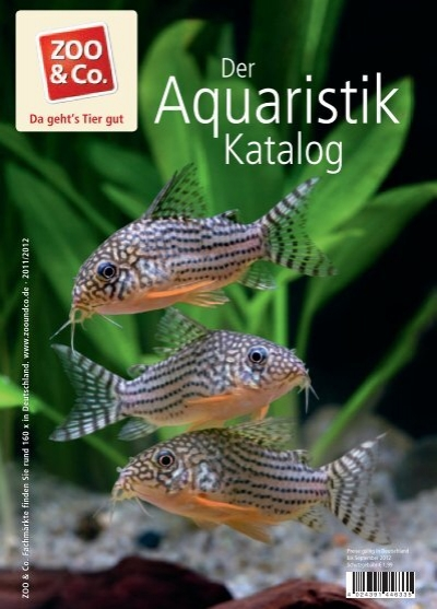 aquaristik katalog zoo co