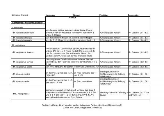 Schultermuskulatur Name Lage Ursprung Ansatz Funktion M ...
