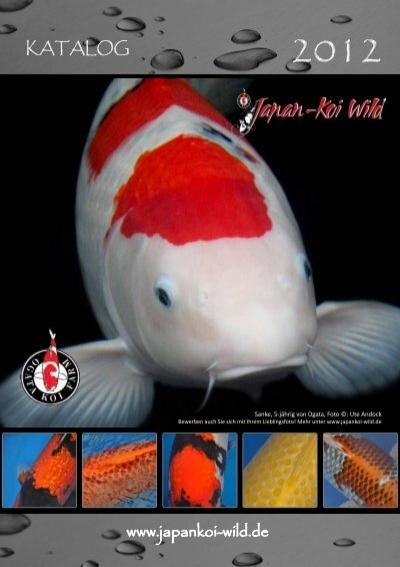 Teichbau zubeh r katalog for Japan koi wild