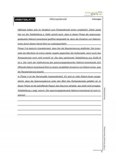 Berühmt Arbeitsblatt 8 Osmose Antworten Zeitgenössisch ...