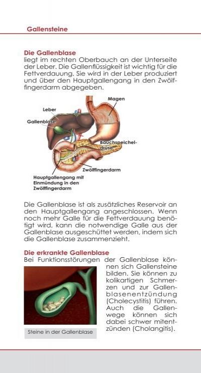 Ungewöhnlich Gallensystem Anatomie Galerie - Anatomie Von ...