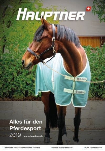 Pferd und Reiter 2019