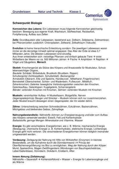 Ungewöhnlich Mathe Arbeitsblatt Für Klasse 7 Pdf Bilder - Gemischte ...