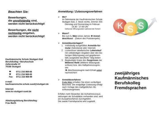 druckversion infoblatt bkfr kaufm nnische schule. Black Bedroom Furniture Sets. Home Design Ideas