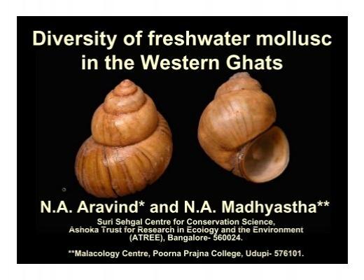 freshwater diversity