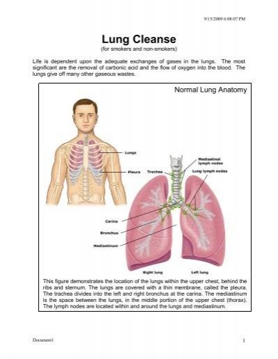 Lung Cleanse Dr Piyush Saxena