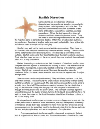Worksheets Starfish Dissection Worksheet starfish dissection worksheet intrepidpath lab 75 points