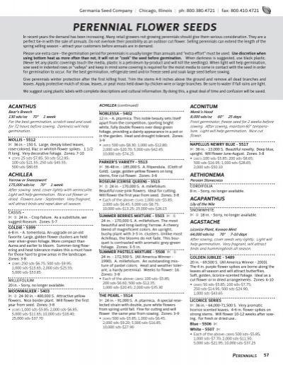 FLOWER DIGITALIS FOXGLOVE ALBA WHITE 8 GRAMS ~ APPROX 80,000 SEEDS BULK