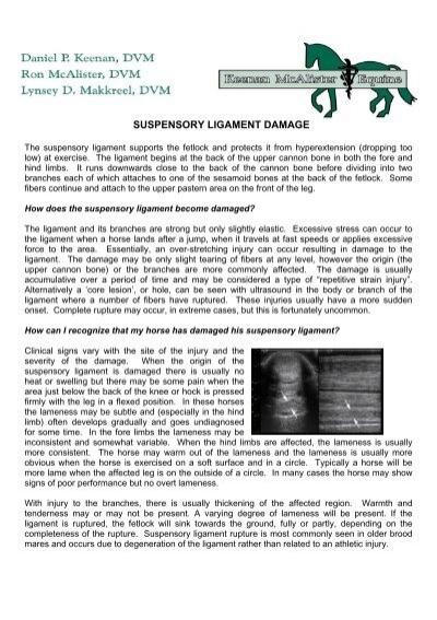SUSPENSORY LIGAMENT DAMAGE - Keenan McAlister Equine