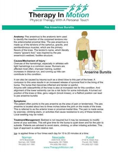 Pes Anserinus Bursitis Therapy In Motion