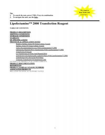 Lipofectamine 2000 Transfection Reagent