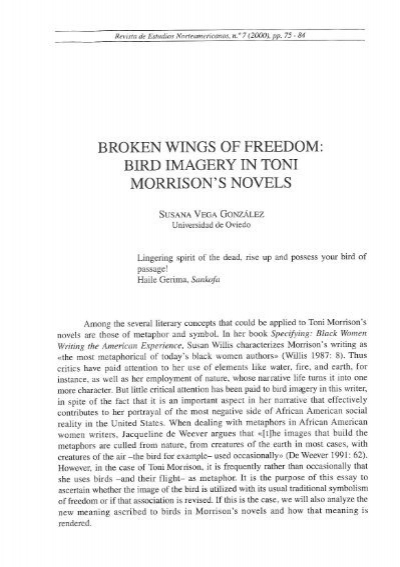 freedom imagery