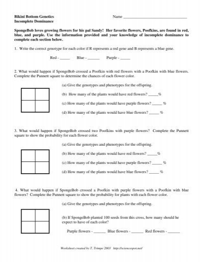 codominance and incomplete dominance worksheet - bagru.info