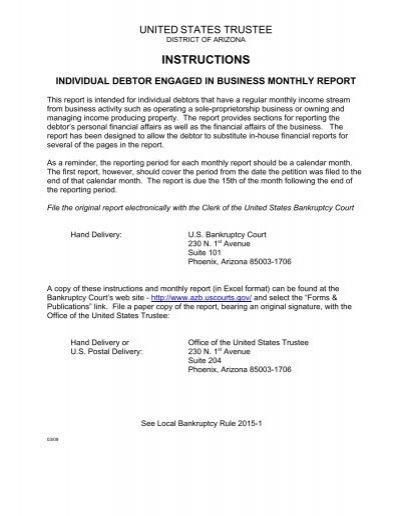 individual debtor engaged in business monthly report – Business Monthly Report
