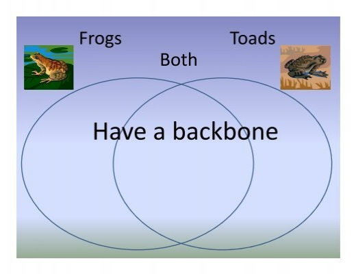 Frogs And Toads Venn Diagram