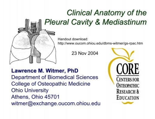 Clinical Anatomy of the Pleural Cavity & Mediastinum
