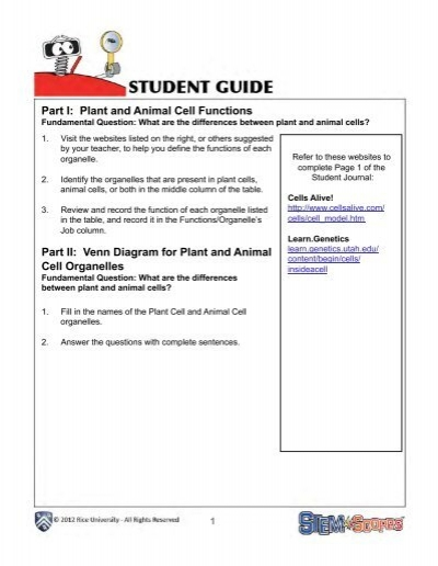 Plant And Animal Cells Student Guide