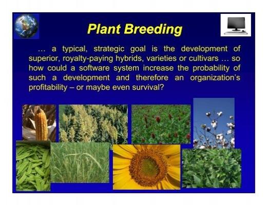 an analysis of plant breeding