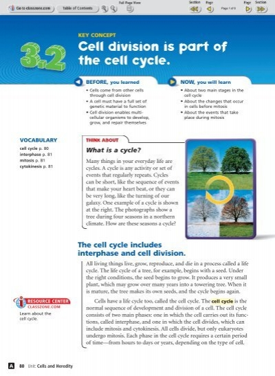 cell energetics study guide Get this from a library guide to cellular energetics [lynne c carter] -- for undergraduate courses in biology, cell physiology and molecular biology.