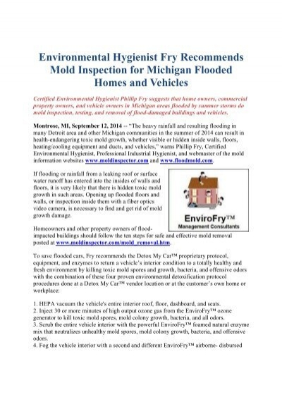Environmental Hygienist Fry Recommends Mold Inspection for