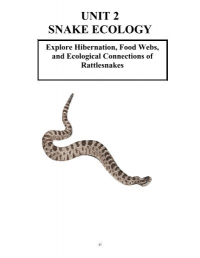 Snakes In The Snow Activity 12 A Matter Of Life And