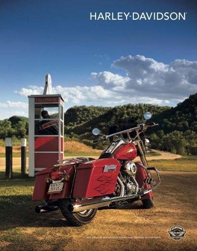 Harley Davidson dyna low rider fxdl gas tank console chrome screw kit 67005-01