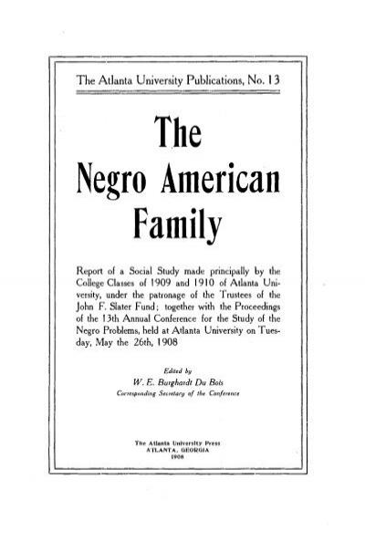 The Negro American Family