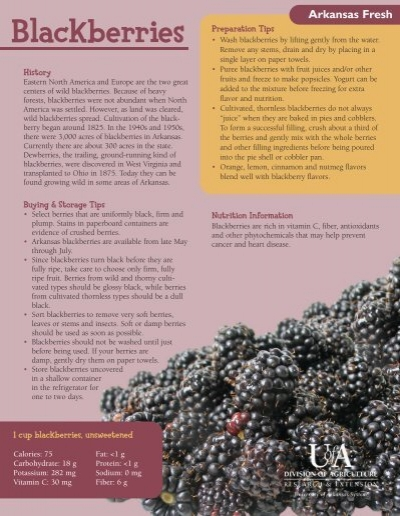 Arkansas Fresh Blackberries University Of Arkansas Cooperative