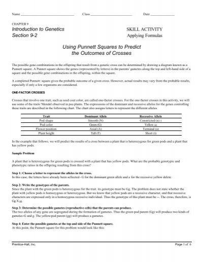monohybrid problems worksheet free worksheets library download and print worksheets free on. Black Bedroom Furniture Sets. Home Design Ideas