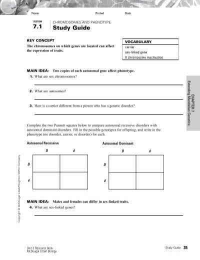 sec 7 1 chromosomes and phenotype worksheet. Black Bedroom Furniture Sets. Home Design Ideas